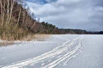 Na nartach biegowych po jeziorze Bukrzyno Małe