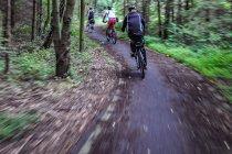 Na rowerach po Bornholmie