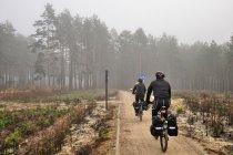 Na rowerowej drodze przed Drzewiczem