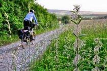 Na rowerowej drodze w Dolnej Saksonii