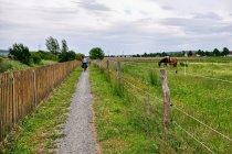 Na rowerowej ścieżce do Hildesheim