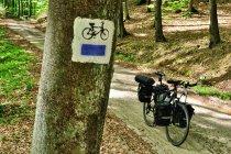 Na rowerowym szlaku do Kartuz