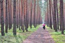 Na rowerowym szlaku wokół Jeziora Sulejowskiego