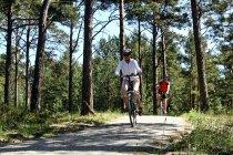 Na rowerze po Mierzei Helskiej