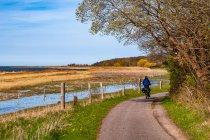 Na rowerze wzdłuż Morza Bałtyckiego