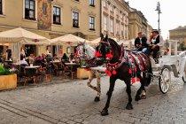 Na Rynku Głównym w Krakowie