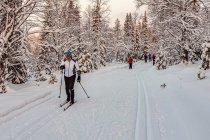 Na trasie narciarskiej