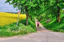 Na Wiślanej Trasie Rowerowej przed Nowem