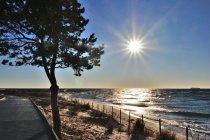 Nadbałtycki krajobraz na Helu