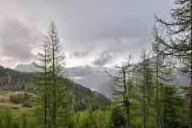 Nadchodząca burza w Dolomitach