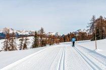 Narciarska trasa biegowa na płaskowyżu w Południowym Tyrolu