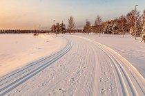 Narciarska trasa biegowa nad jeziorem Torankijärvi