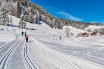 Narciarska trasa biegowa Schwende-Loipe