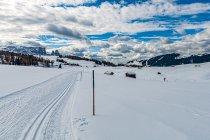 Narciarska włóczęga po Alpe di Siusi