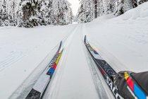 Narciarstwo biegowe w Finlandii