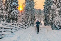 Narciarz biegowy na tle wschodzącego Słońca