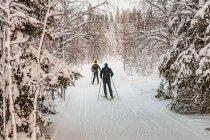 Narciarze biegowi w Finlandii