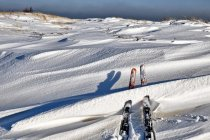 Narty biegowe po Półwyspie Helskim