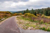 Nasyp kolejowy po słowackiej stronie