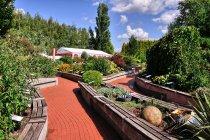 Naturalne ekspozycje w arboretum