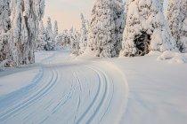 Naturalny schron przy trasie narciarskiej