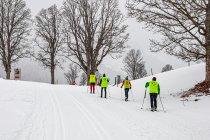 Niedowidzący na nartach biegowych
