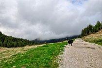Nisko wiszące chmury nad Dolomitami