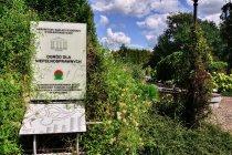 Ogród dla niepełnosprawnych w Bolestraszycach