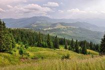Okolice Przełęczy Prislop widziane z góry