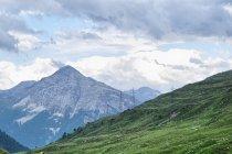 Ola w Alpach