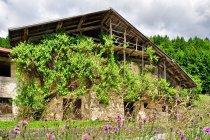Opuszczony dom w Valle di Primiero