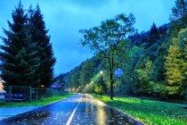 Oświetlenie drogi rowerowej
