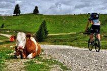 Pani na Alpe di Siusi