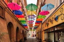 Parasolki nad ulicą Piekarską w Tarnowie