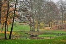 Park dworski w Jarcewie