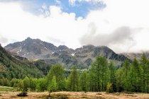 Pasmo Dolomiti Lagorai