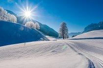 Piękna zimowa scena z Tyrolu