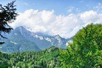Pierwsze alpejskie widoki