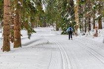 Pierwsze chwile na narciarskim szlaku