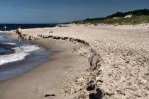 Plaża między Łazami a Dąbkami