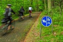 Po drodze rowerowej wśród Rajskich Pagórków