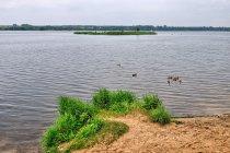 Południowy kraniec Jeziora Sulejowskiego