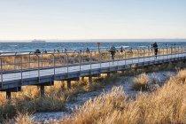 Pomosty nad wydmami wzdłuż bałtyckiej plaży