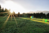 Poranne słońce w Tatrach