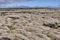 Porośnięte mchem pola lawy po erupcji wulkany Laki