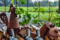 Produkty winnicy w Pedersker