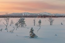 Przepiękne kolory zachodu Słońca w Finlandii