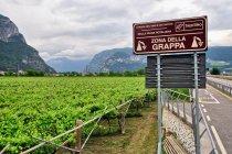 Rejon uprawy winorośli w Trentino