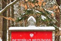 Rezerwat przyrody Jezioro Turzycowe