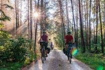 Rowerami po szlaku Green Velo w Świętokrzyskiem